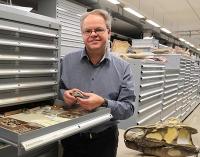 Neuer Zwergsaurier aus der Frühzeit der Reptilien entdeckt