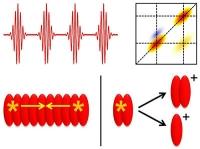 Neue Methoden der 2D-Spektroskopie