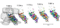 Weltrekord: Schnellste 3D-Tomographien an BESSY II