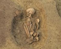 Vergangene menschliche Lebens- und Abstammungsgeschichten beleuchten