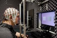 Unser Gehirn behält das Unerwartete im Blick