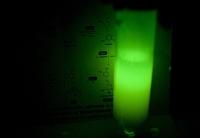 Enzymkette für die Erzeugung leuchtender Lebewesen entdeckt